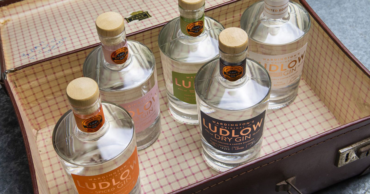 1.1 Choosing the perfect gin